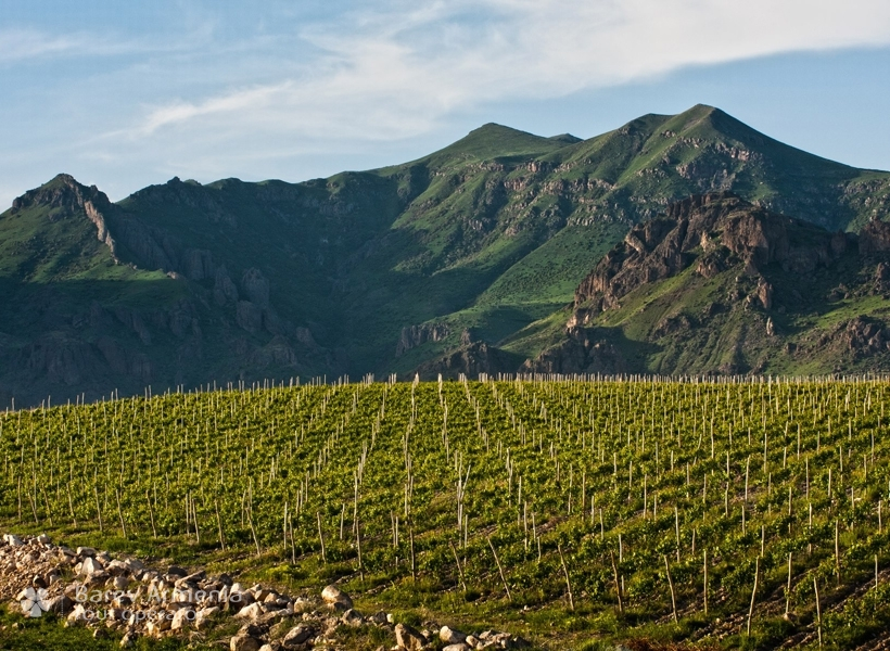 Cradle Of Winemaking Wine Tour In Armenia Barev Armenia