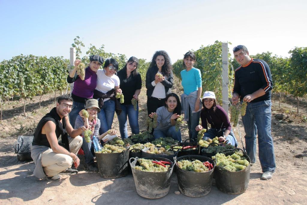 Harvest Tours